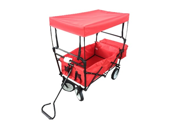 FOLDABLE WAGON WITH COVER & ICE BAG